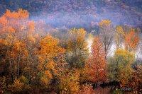 Köylerimizde Sonbahar